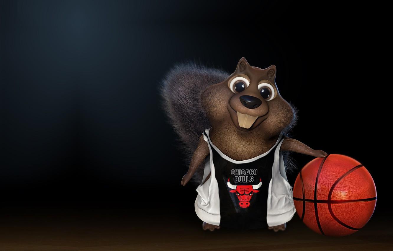 Фото обои мяч, баскетбол, Чикаго Буллз, Chicago Bulls, детская, darlon ximenes, Squirrel playing basketball!