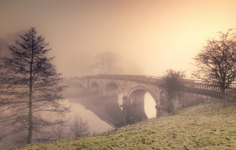 Фото обои мост, туман, река