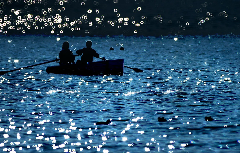 двое на лодке картинки питается насекомыми, поедает