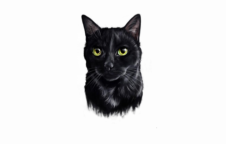 твиттера картинка черного кота без фона любили древние