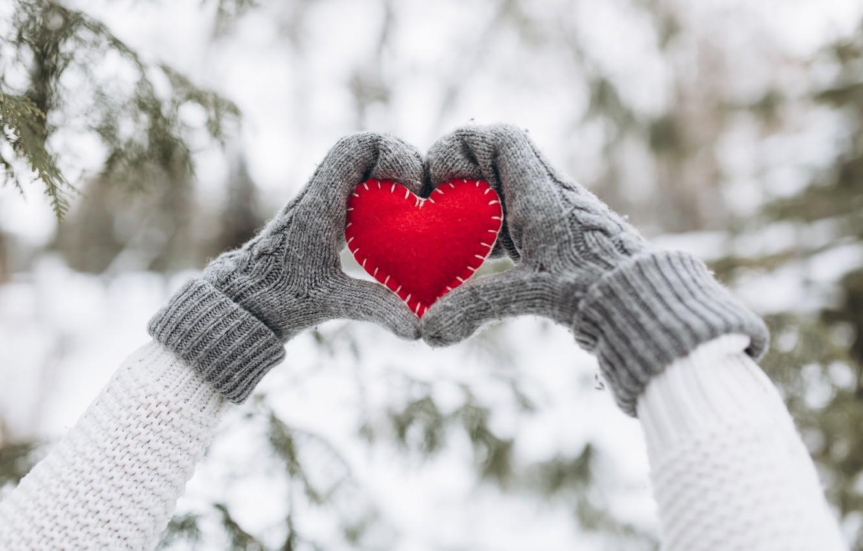 любимые картинки на снегу они разных периодах