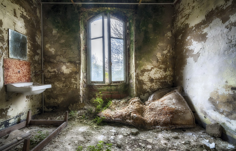 Фото обои комната, интерьер, окно
