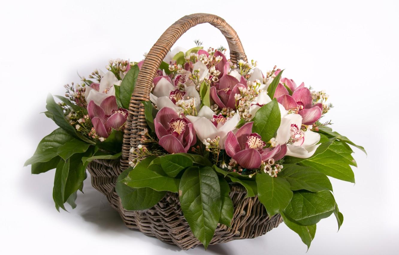 Фото обои корзина, розы, орхидеи