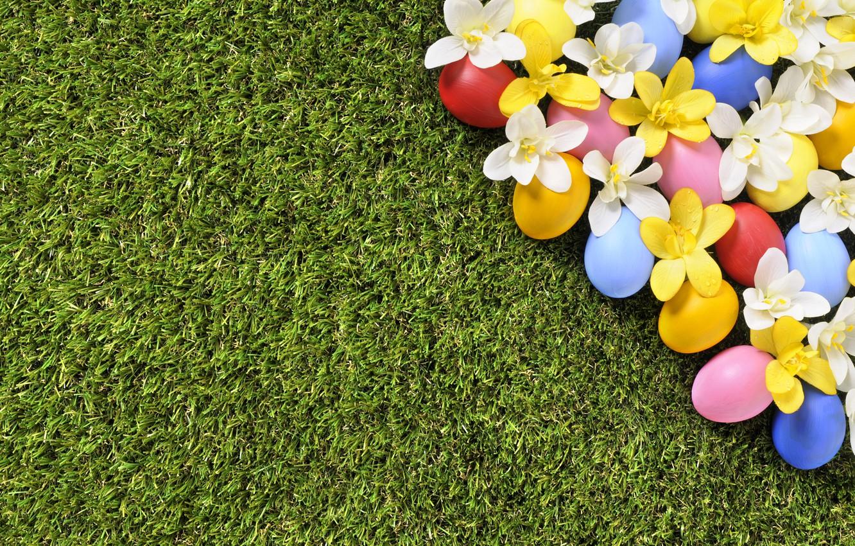 Фото обои трава, цветы, весна, Пасха, flowers, spring, Easter, eggs, decoration, green grass, Happy, яйца крашеные