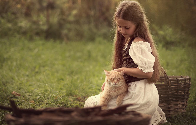 Девочка гладит кошку картинка