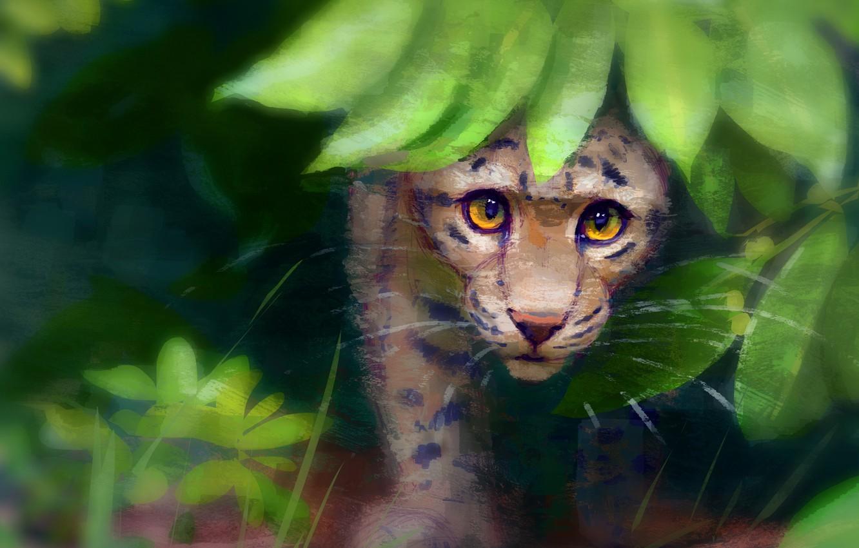 Фото обои природа, малыш, леопард