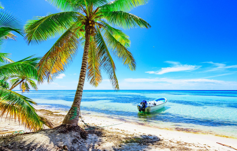 Фото обои песок, море, пляж, солнце, пальмы, берег, лодка, summer, beach, sea, island, sand, paradise, palms, tropical