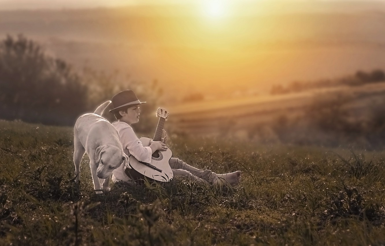 Фото обои гитара, собака, вечер, мальчик