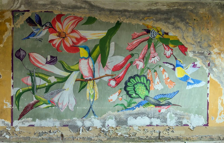 Фото обои фон, стена, рисунок