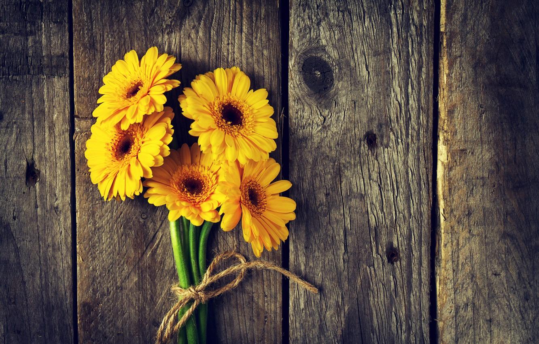 Фото обои цветы, доски, желтые, гербера