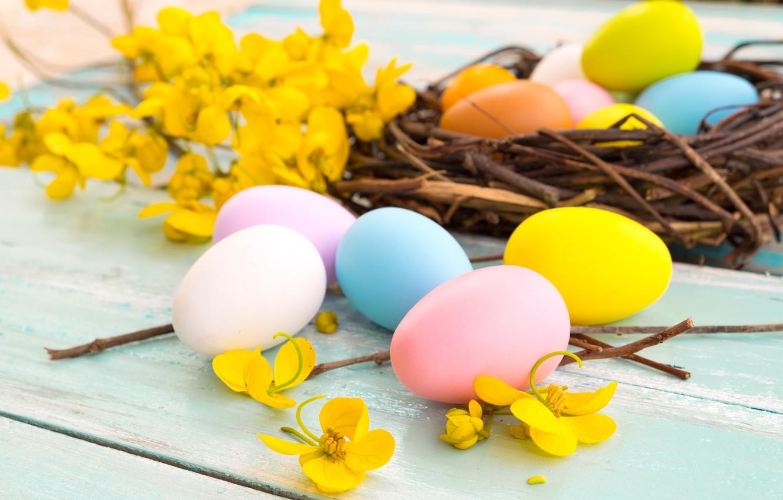 Фото обои цветы, корзина, яйца, весна, желтые, colorful, Пасха, yellow, wood, pink, flowers, spring, Easter, eggs, decoration, …