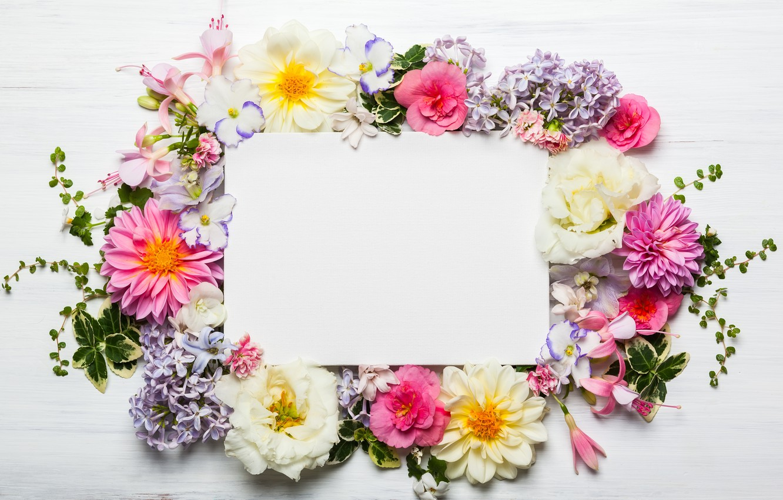 Фото обои цветы, wood, pink, flowers, beautiful, композиция, frame, floral