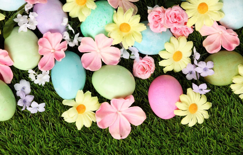 Фото обои трава, цветы, Пасха, flowers, spring, Easter, eggs, decoration, Happy
