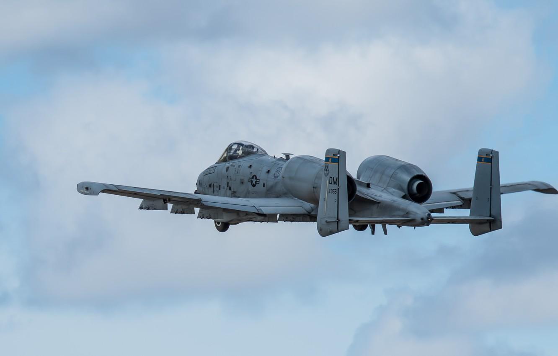 Обои thunderbolt ii, A-10, штурмовик. Авиация foto 17