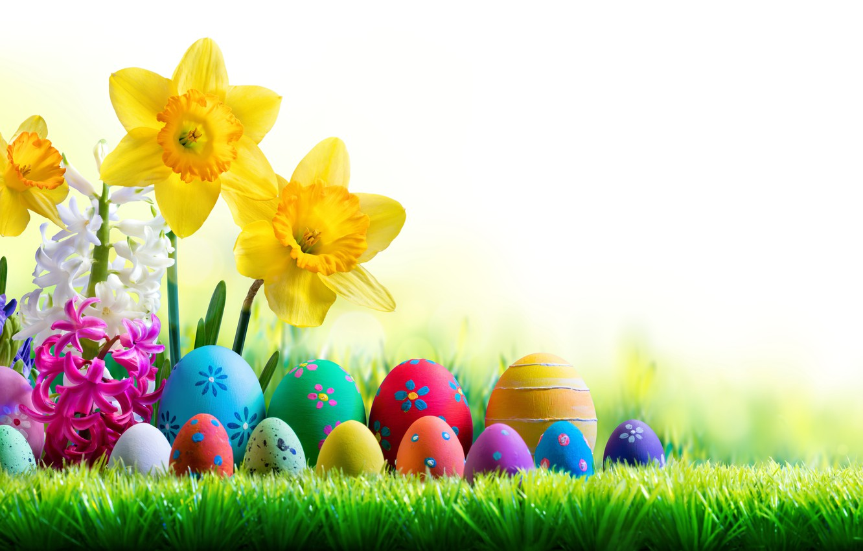 Фото обои небо, трава, солнце, цветы, весна, Пасха, flowers, нарциссы, spring, Easter, eggs, decoration, Happy, яйца крашеные