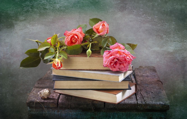 Фото обои цветы, доски, книги, розы, ракушка