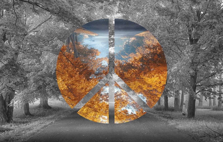 Фото обои Дорога, Осень, Лес, Photoshop, Фотошоп, Road, Forest, Atumn, Polyscape, BlackandWhite