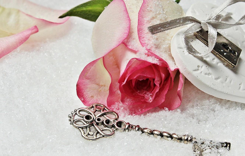 Фото обои love, rose, heart, winter, snow, key, romantic, lock