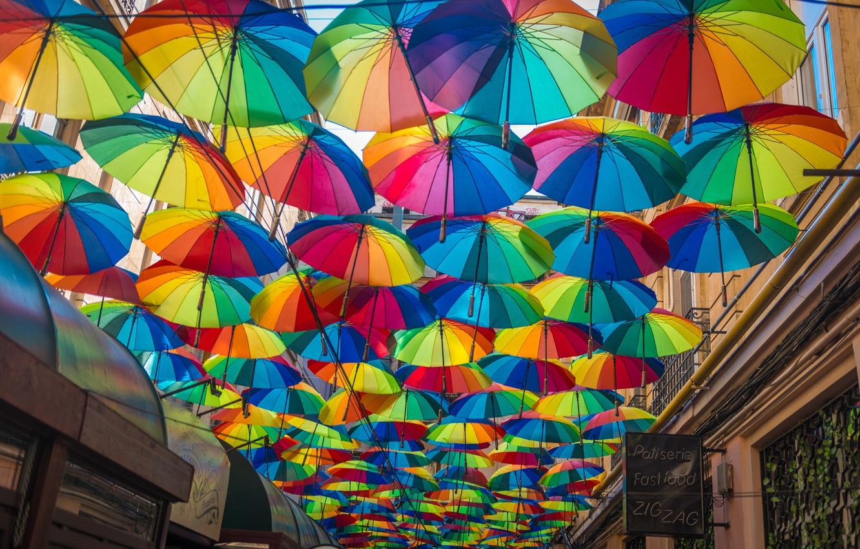 Обои umbrella, Бухарест, Румыния, Bucharest, Romania, зонтики. Разное foto 6
