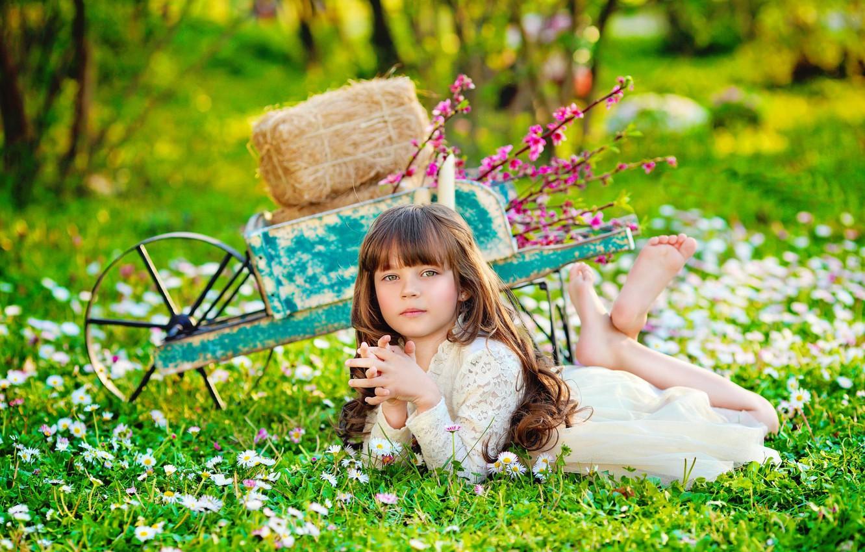 Фото обои лето, цветы, природа, тачка, сено, девочка