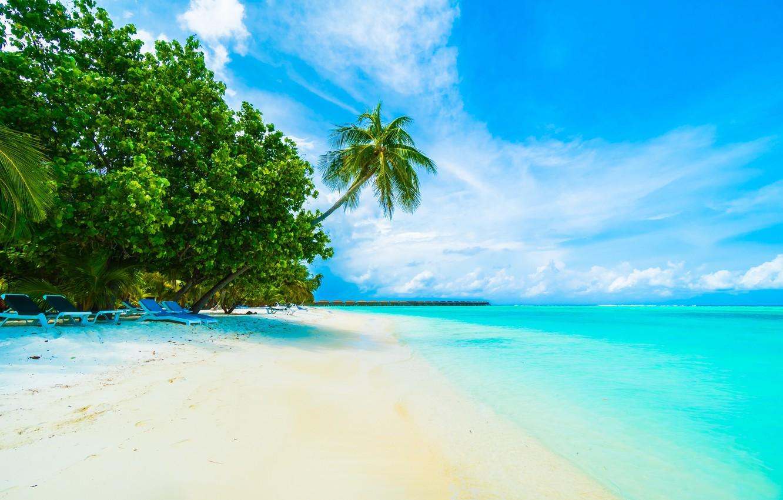 Фото обои Песок, Море, Пляж, Лето, Берег, Тропики, Пальмы, Мальдивы