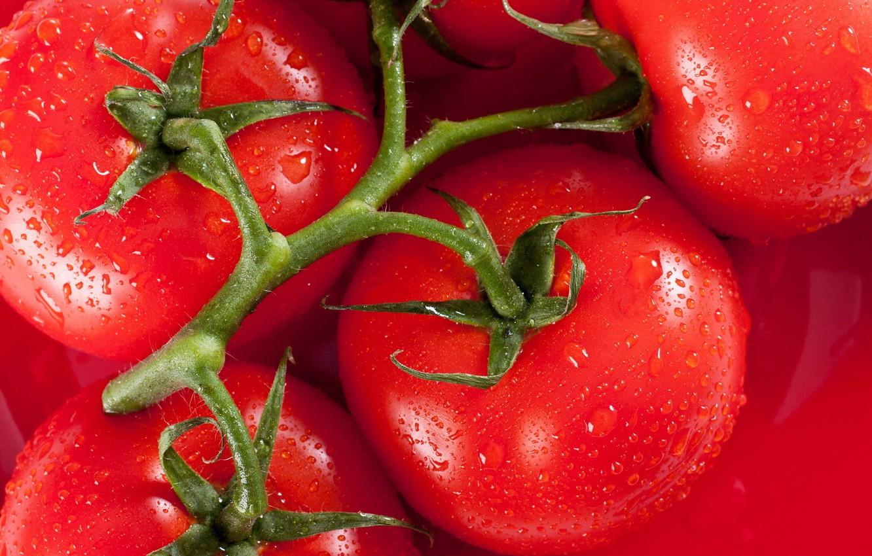 Обои makro, помидоры, еда, овощи, капли, стол. Еда foto 13