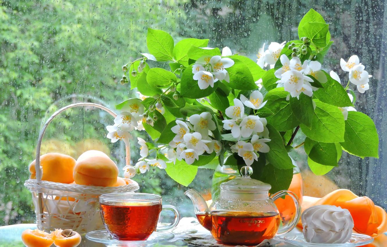 Фото обои лето, стекло, фото, дождь, чай, букет, чайник, окно, чаепитие, чашка, фрукты, натюрморт, предметы, абрикосы, жасмин, …