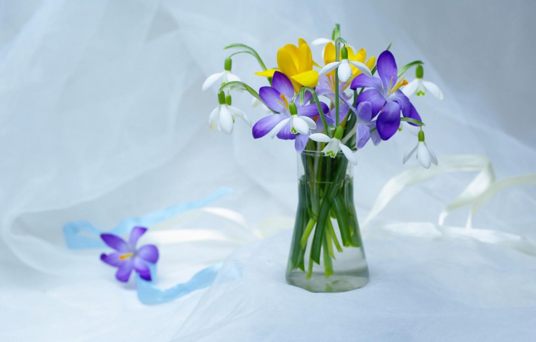 окрашивающие весенние первоцветы вазе фото картинки открытый конфликт