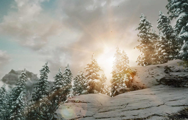 Фото обои солнце, снег, природа, Зима, ели