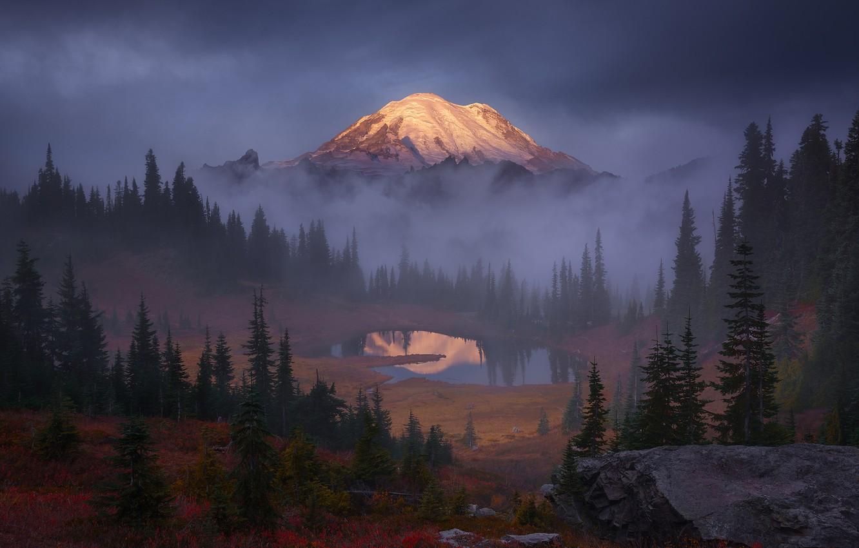 Фото обои лес, небо, деревья, тучи, туман, озеро, скалы, гора, США