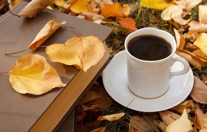 Фото обои осень, листья, кофе, чашка, autumn, leaves, book, fall, cup of coffee