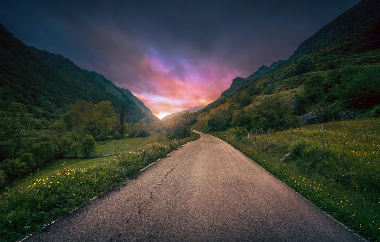 Фото обои дорога, лето, цветы, горы, утро