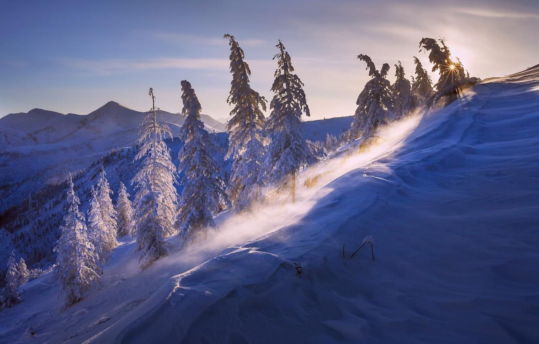 Фото обои зима, солнце, свет, снег, природа, ветер, Мороз минус 43, Бурхалинский перевал