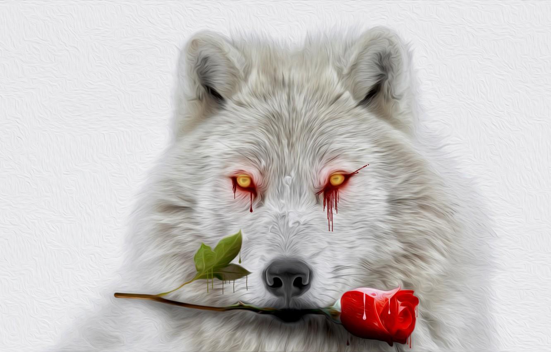 картинки волк с розами тоже