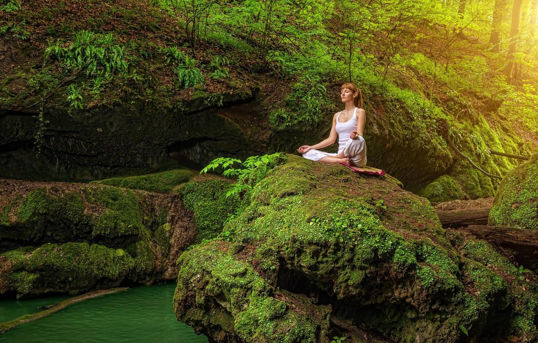 картинки релаксация лес любые другие