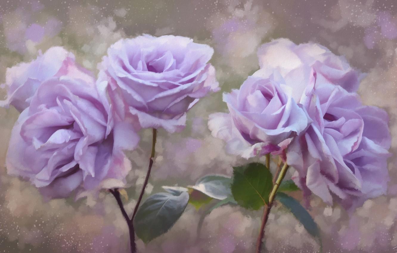 Фото обои цветы, розы, лепестки, живопись