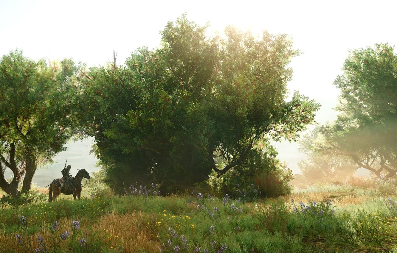 Фото обои лето, природа, всадник, Assassin's Creed Origins