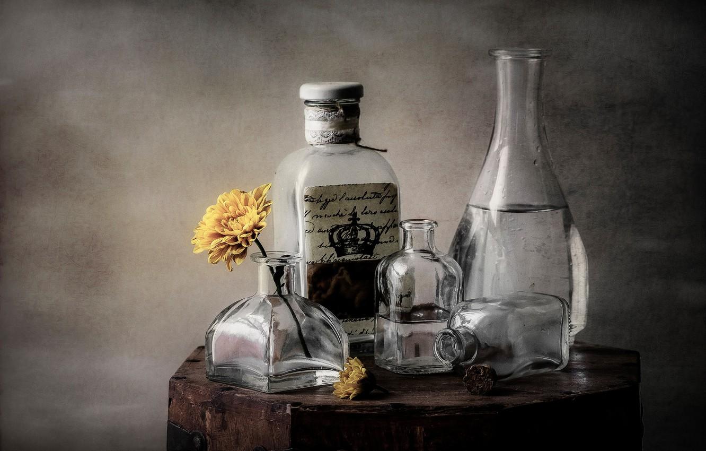 Обои стекло, натюрморт, бутылка, цветы, графин. Разное foto 6
