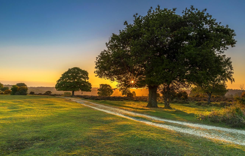 Фото обои Закат, Природа, Деревья, Лучи Света, Луга Дорога
