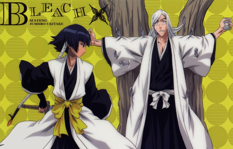 Фото обои game, Bleach, anime, asian, manga, japanese, oriental, asiatic, powerful, strong, sugoi