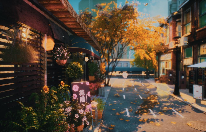 Фото обои осень, цветы, город, дороги, поезд