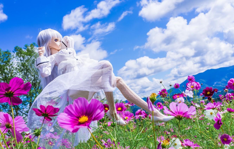 Обои цветы, Кукла. Разное foto 17
