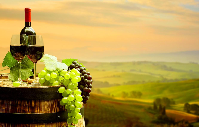 Обои Бутылки, бочки, виноградники, виноград, вино. Разное foto 19