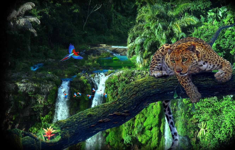 Обои Вода, леопард, дерево, цветы. Разное foto 8