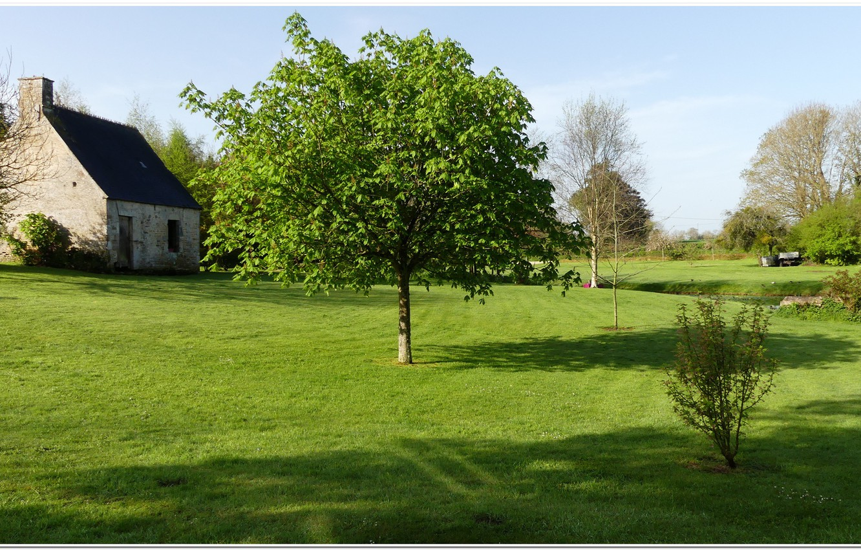 Фото обои france, paysage, Normandie, manche