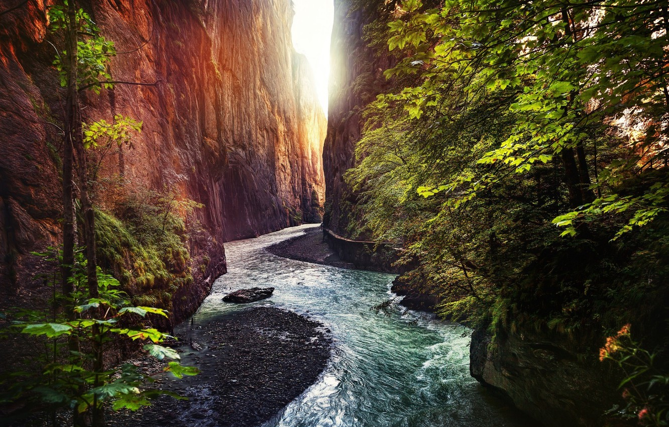 Фото обои rock, forest, trees, landscape, nature, water, River, gorge