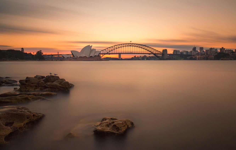 Фото обои мост, ночные огни, Австралия, Сидней, night lights