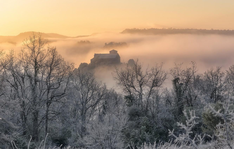 Фото обои зима, природа, туман, утро