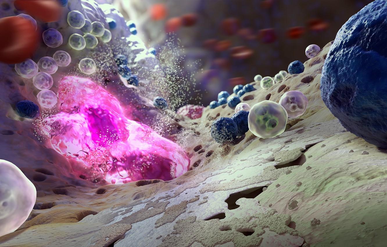 Фото обои colors, macro, bones, science, biology, bacteria, microscope, marrow, Viruses