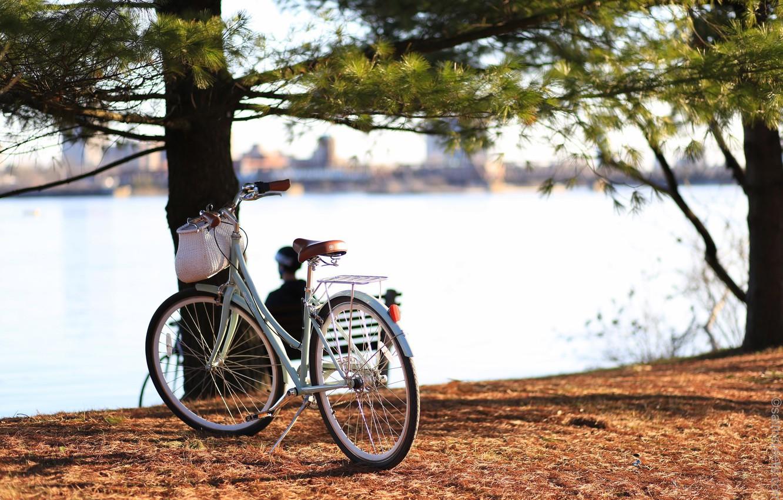 Фото обои велосипед, город, река, Канада, Онтарио, Canada, bicycle, Ontario, cruiser, Quebec, Квебек, Ottawa, круизер, Оттава